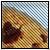 top_dog37 avatar