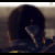 GrahamasarusRex avatar