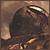 corkey avatar