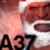 abominable37 avatar