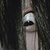 Dr_Sadako avatar