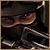 Pazzo avatar