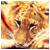 Switch// avatar