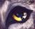ice_dogz avatar