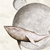 DeRosaJ avatar