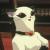 DaftMink avatar