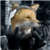 SnippyTheDeliveryFox avatar