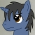 Page Turner the pony avatar