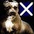 Whipper_Snapper89 avatar