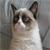 IVMyLife avatar