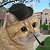 domdomrys avatar
