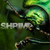 Shrimpey