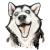 Romankamikadze avatar