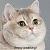 Heavy Breathing Cat avatar