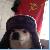 Zaclemore avatar