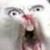 Fronkln avatar