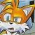 mattycfp avatar