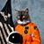 Dweenietod avatar