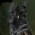 alpine lupine avatar