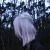 blungo avatar