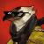 Mepp avatar