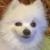 rosk01 avatar