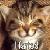 ashleyuk789 avatar