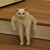 Kotzilla avatar