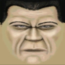 Nonhuman avatar