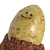 PotatoMuffin avatar