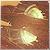 RoadRunner. avatar