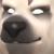 Acacius avatar