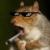 D2RG6 avatar