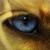 ThunderCurrie avatar