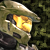 Caboose117 avatar