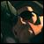 SCEj_Zander avatar
