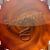 Bloodroar avatar