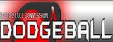 DodgeBall Banner