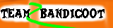 Team Bandicoot 2 Flag