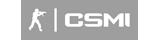 CSMI banner