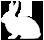 Bunny Hop icon