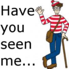 Waldo Transparent