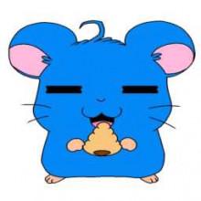 Konata Hamster Logo
