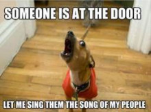 i have to sing