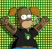 Homer Simpson Shakejunt