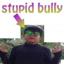 stupid bully