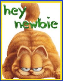 hey^newbie