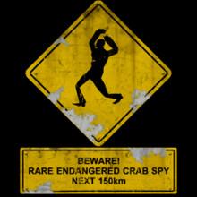Crab Spy Road sign