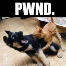 Pwnd.