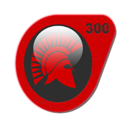 Icon 300